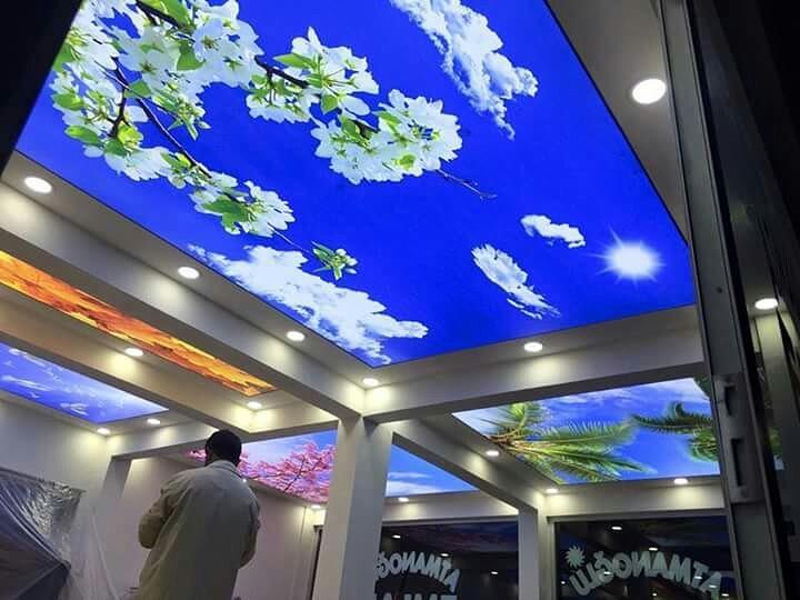 transparan-gergi-tavan-modelleri-1-42 Our Services