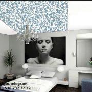 stretch ceiling, barrisol
